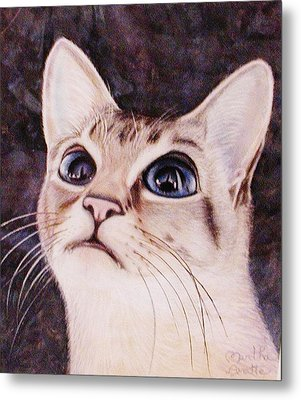 Calvin The Cat Metal Print by Martha Ayotte