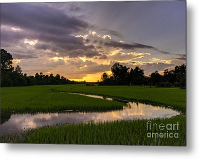 Cambodia Rice Fields Sunset Metal Print by Mike Reid