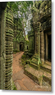 Cambodia Ta Phrom Ruins Metal Print by Mike Reid