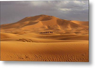 Metal Print featuring the photograph Camel Trek by Ramona Johnston