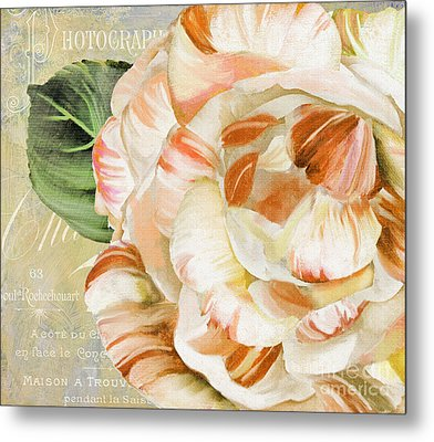 Camellia II Metal Print by Mindy Sommers