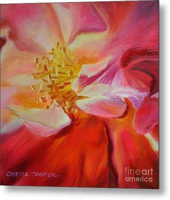 Camellia's Blush Metal Print