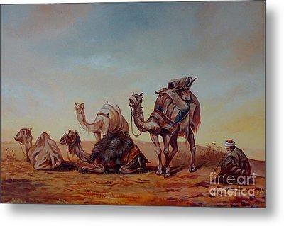 Camels Metal Print by Shanju Azhikode
