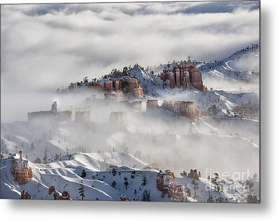 Metal Print featuring the photograph Camouflage - Bryce Canyon, Utah by Sandra Bronstein
