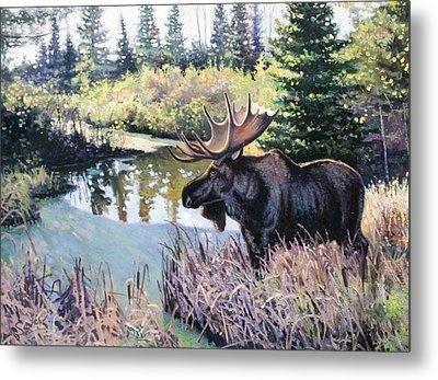 Camp 20 Creek Moose Metal Print by Larry Seiler