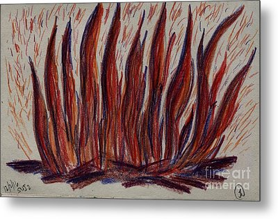 Campfire Flames Metal Print by Theresa Willingham