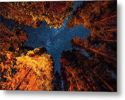 Camping Under The Stars  Metal Print by Alpha Wanderlust
