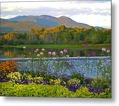 Campton Pond Campton New Hampshire Metal Print by Nancy Griswold