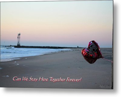Can We Stay Here... Metal Print by Robert Banach