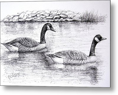 Canada Geese Metal Print by Terence John Cleary