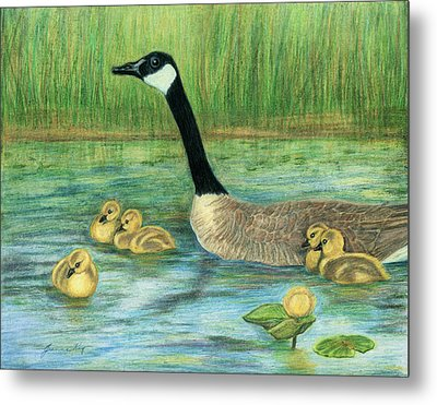 Metal Print featuring the painting Canada Goose And Goslings by Jeanne Kay Juhos