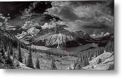 Canadian Beauty 4 Metal Print