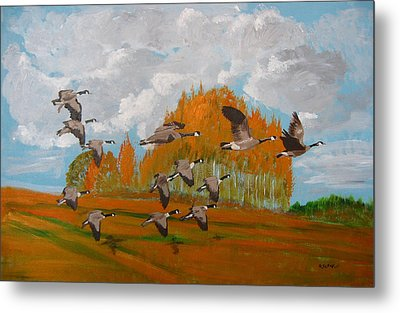 Canadian Geese Metal Print by Richard Le Page