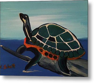 Canal Pointe Turtle Metal Print