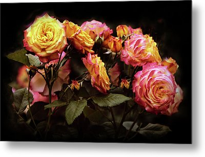 Candlelight Rose  Metal Print by Jessica Jenney