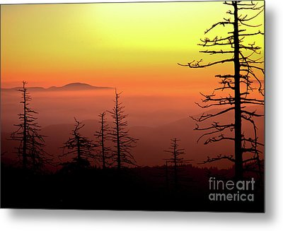 Metal Print featuring the photograph Candy Corn Sunrise by Douglas Stucky