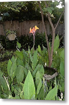 Canna With Birdbath Metal Print by Fred Jinkins