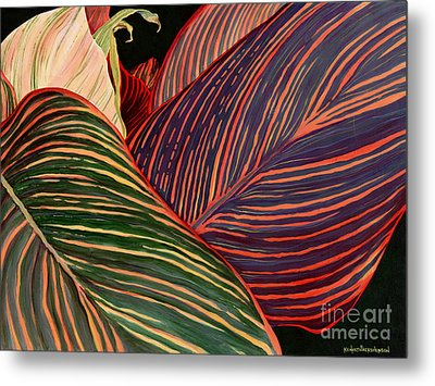 Cannas Leaves Metal Print by Kenneth Hershenson