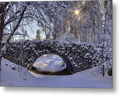 Cannon Hill Park Winter Metal Print