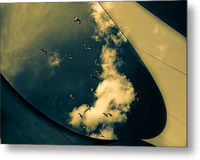 Canvas Seagulls Metal Print by Bob Orsillo