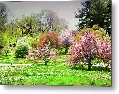 Metal Print featuring the photograph Garden Canvas  by Diana Angstadt