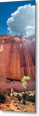 Canyon De Chelley Metal Print by Ric Soulen