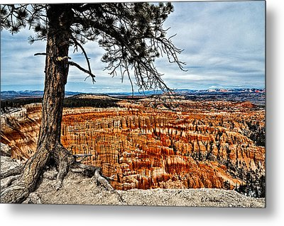 Canyon Overlook Metal Print by Christopher Holmes