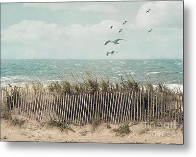 Cape Cod Beach Scene Metal Print by Juli Scalzi