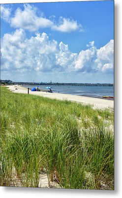 Metal Print featuring the photograph Cape Henlopen State Park by Brendan Reals