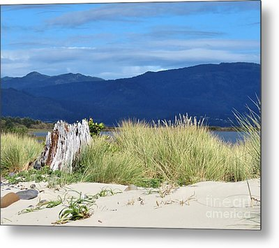 Sand Grass Mountains Sky Metal Print by Michele Penner