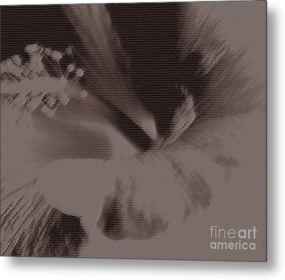 Cappuccino Metal Print by Linda Shafer