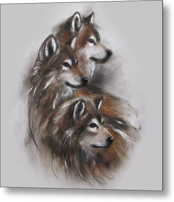 Captivated Metal Print by Jackie Flaten