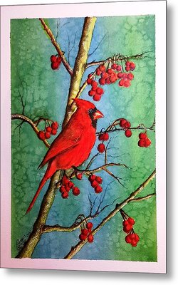 Cardinal And Berries Metal Print