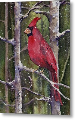 Cardinal Metal Print by Sam Sidders