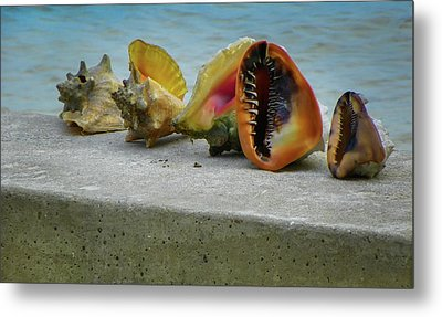 Metal Print featuring the photograph Caribbean Charisma by Karen Wiles