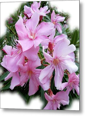 Metal Print featuring the photograph Caribbean Oleander by Marie Hicks