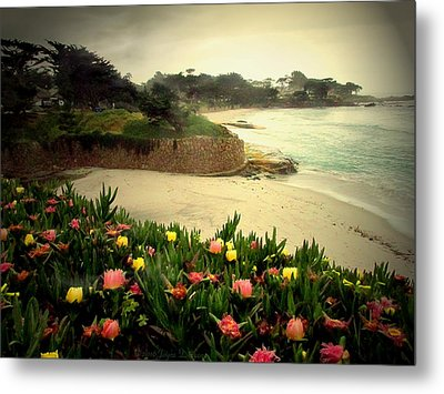Carmel Beach And Iceplant Metal Print by Joyce Dickens