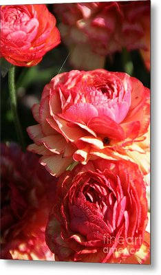 Carnival Of Flowers 02 Metal Print by Andrea Jean