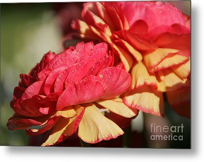 Carnival Of Flowers 05 Metal Print by Andrea Jean