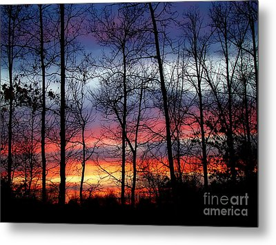 Metal Print featuring the photograph Carolina Sunset by Sue Melvin