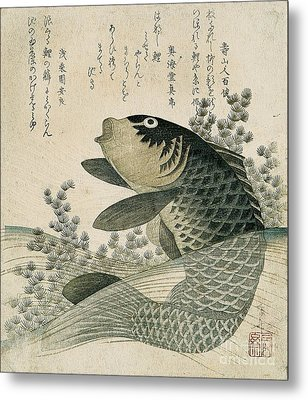 Carp Among Pond Plants Metal Print by Ryuryukyo Shinsai