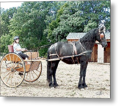 Carriage Driving Metal Print by David Syers