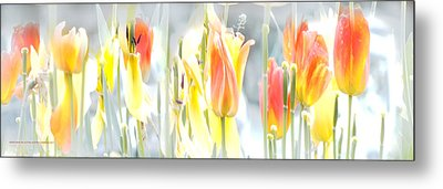 Metal Print featuring the photograph Carrusel De Primavera by Alfonso Garcia