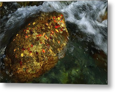 Cascade Creek 2am-000846 Metal Print by Andrew McInnes