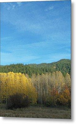 Cascade Fall Metal Print