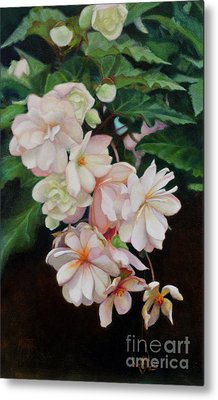 Cascade Of Begonias  Metal Print by Margit Sampogna