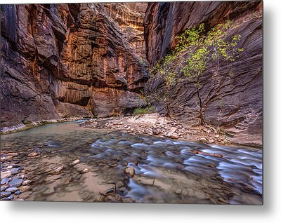 Metal Print featuring the photograph Cascades In The Narrows Of Zion by Pierre Leclerc Photography