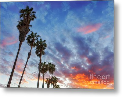 Metal Print featuring the photograph Casitas Palms by John A Rodriguez