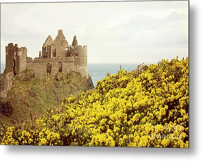 Metal Print featuring the photograph Castle Ruins And Yellow Wildflowers Along The Irish Coast by Juli Scalzi