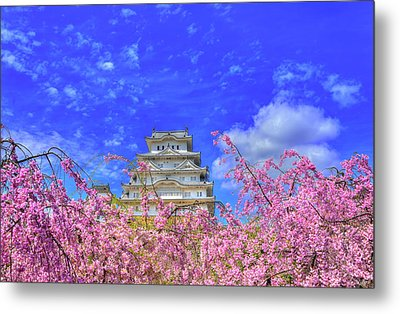 Castle's Blossom Metal Print